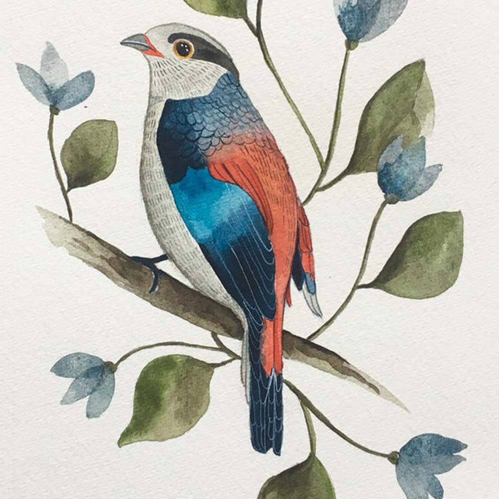 Bird original in watercolor